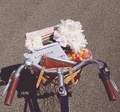 Parisian bicycle flowers