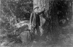 John Muir Founder of the Sierra Club and the great protector of the Sierra Nevada mountains Sequoia National Park, National Parks, John Muir Way, John Muir Quotes, Sierra Club, Hiking Quotes, Yosemite Valley, The Mountains Are Calling, Closer To Nature