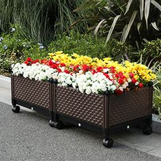 Wood Planter Box, Wooden Planters, Wooden Raised Garden Bed, Raised Bed, Vegetable Bed, Flower Planters, Flower Pots, Self Watering, Garden Boxes
