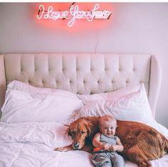Dog friend