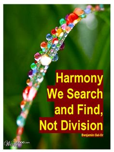 I'm reading Harmony We Search and Find, Not Division on Scribd Philosophy Of Science, Philosophy Books, King Of Persia, Hebrew Bible, The Porter, Search And Find, Roman Emperor, Textbook, Astronomy