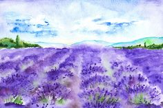 Watercolor lavender fields landscape by Art By Silmairel on @creativemarket