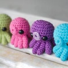 squittle octopus