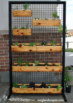 Create this awesome Herb Wall on your own!