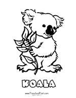 Aussie Animal God Made Animals Bible Lesson