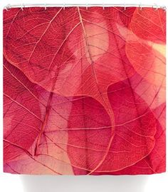 Kess InHouse Ingrid Beddoes Delicate Leaves Shower Curtain, 69 by 70-Inch by Kess InHouse, http://www.amazon.com/dp/B00EVJL1GI/ref=cm_sw_r_pi_dp_IMYqsb0K5PQVP