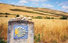 Waymarkers of the Camino de Santiago