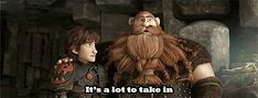 HTTYD  2. I'm guessing Hiccup's just told Stoick that Valka is alive and training dragons.