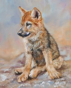 wolf pup painting by David Stribbling