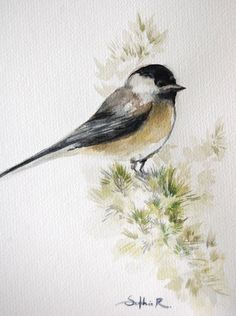Hey, I found this really awesome Etsy listing at https://www.etsy.com/listing/180739916/grey-bird-original-watercolor-painting