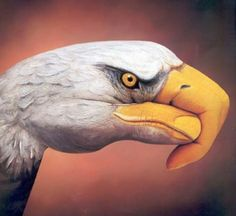 Eagle hand art