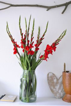 red flowers at home //repinned by www.boksteen.de