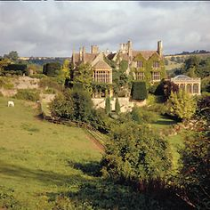 jane seymour st. catherines court - Google Search