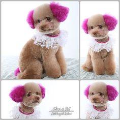 Cute grooming with OPAWZ Pet Hair Dye
