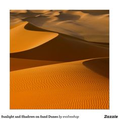 Sunlight and Shadows on Sand Dunes