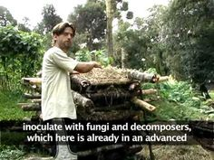 This is a documentary about ecovillages and permaculture seen from a sustainable consumption perspective. The intention is to show an example of lifestyles that take sustainability to the extreme, living and consuming in a way that causes minimum impact on the planet.    contact: gabrielnomundo@hotmail.com