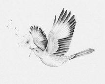mockingbird in flight tattoo - Google Search