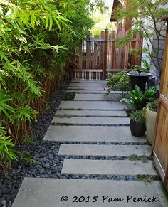 Path of poured concrete and Mexican beach pebbles. Colorful LA garden of Potted . - Path of poured concrete and Mexican beach pebbles. Colorful LA garden of Potted maven Annette Gutie - Side Yard Landscaping, Modern Landscaping, Landscaping Ideas, Backyard Garden Design, Love Garden, Backyard Ideas, Back Gardens, Outdoor Gardens, Mexican Beach Pebbles