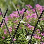 Black Bamboo Trellises