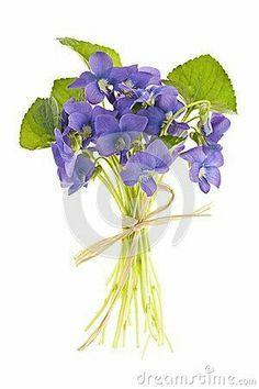 Flowers Bouquet Tattoo Lavender 66 Ideas For 2019 Violet Tattoo, Bouquet Tattoo, Sweet Violets, Botanical Art, Flower Tattoos, Pansies, Watercolor Flowers, Fine Art America, Flower Arrangements