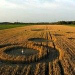 In this video footage you could se two Crop Circles found in late July 2013. One was found near Stadskanaal, Groningen on 29th July 2013. The second was found on 30th July 2013 near Standdaarbuiten, nr Oudenbosch.