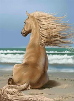 """Just relax and feel the wind in your hair! """"sea breeze...""""pro: SAI"""