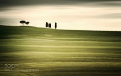 Seven Trees by carstenmeyerdierks. Please Like http://fb.me/go4photos and Follow @go4fotos Thank You. :-)