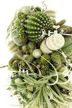 Azuma Makoto – Botanical Sculpture