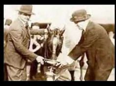 Man O' War...lovely video tribute to an incredible race horse and a noble champion!