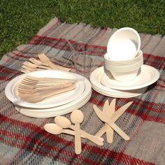 Biodegradable party set