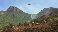 A helicopter with a monsoon bucket drops water on trees in the Ella Track/Cass Ridge Track area above Governors Bay. Monsoon, Destruction, Rage, Bucket, Trees, Mountains, Tree Structure, Buckets, Wood