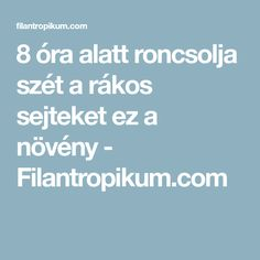 8 óra alatt roncsolja szét a rákos sejteket ez a növény - Filantropikum.com Life Hacks, Food And Drink, Health Fitness, Education, Healthy, Facebook, Lifestyle, Plants, Shopping