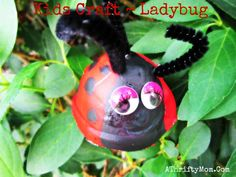 """Summer is here so plenty of time for a fun project with the kids. We made these cute little Ladybugs the other day and the kids loved them. Can you guess what they are made of…. something most of you have in your house already! These are made out of the """"cup"""" …"""