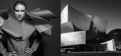 Arena Page vs Frank Gehry