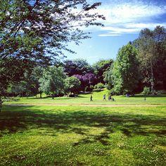 "@bethnoy's photo: ""Picnic on the park"" #england #summer"