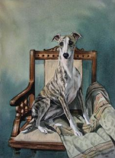 Southern Wind Studio: whippet art by Yvonne Sovereign