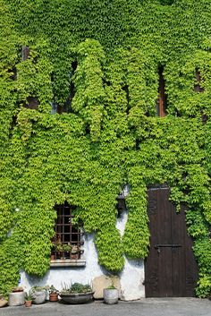 Winery in Spilimbergo, Italy, via Flickr.
