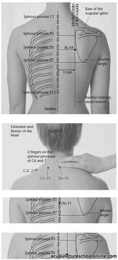 Acupressure More Effective Than Physical Therapy - Acupuncture Hut Acupuncture Benefits, Acupuncture Points, Acupressure Points, Body Therapy, Massage Therapy, Physical Therapy, Les Chakras, Human Anatomy And Physiology, Muscle Anatomy