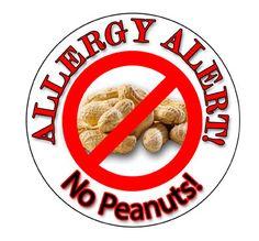 Allergy Sticker, Peanut Allergy Sticker, Allergy Alert Sticker, Personalized Allergy Sticker (152) on Etsy, $4.00