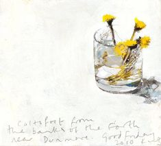 Kurt Jackson - Coltsfoot from the banks of the Forth Kurt Jackson, Ceramic Painting, Painting & Drawing, Watercolor Illustration, Watercolor Flowers, St Just, Jackson's Art, Still Life Flowers, Plant Art