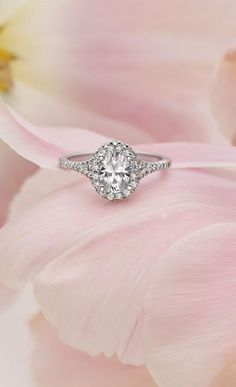 Get a Bachelorette-Inspired Oval Shaped Engagement Ring at Any Budget:  This gorgeous halo setting is $1,995, and you can custom make your ring on Brilliant Earth! The cheapest oval shaped diamond that we found was $630, putting the total cost of the ring at $2,625, but as long as you stay under $3,000 for the diamond itself you will still beat the $5,000 budget!