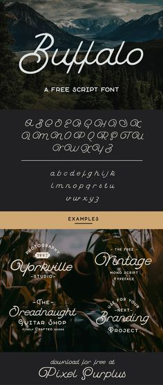 Free font—Buffalo is a loopy & quirky monoline script font from Hustle Supply Co. This premium free font is vintage themed and perfect for branding and promotional projects! - Free for Personal & Commercial use.