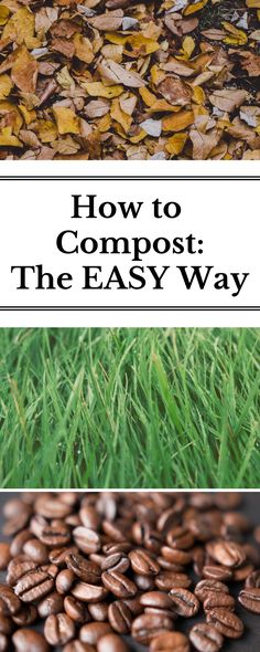 Stop struggling with how and what to compost and get ready to use all those fall leaves with this super easy way to begin your composting system!