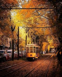 Winter can be fun, but I always miss vibrant autumn colours ' Photo by Explore. Portugal, Tramway, Europe Photos, World Cities, Autumn Art, Central Europe, Lake Como, Turin, Wonderful Places