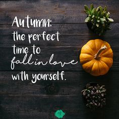 Autumn is the perfect time for many things! Explore the happiness and healing that comes from things such as Fall Quotes on Anxiety Gone! Mantras For Anxiety, Anxiety Quotes, Overcoming Anxiety, Coping Mechanisms, Anxiety Relief, Home And Away, Positive Affirmations, Helpful Hints, Thanksgiving