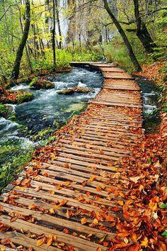 Autumn path in Plitvice Lakes National Park, Croatia | ©