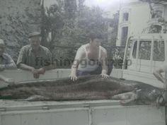 Το ψάρεμα στη ζωή του Ανθρώπου: ΓΟΥΛΙΑΝΟΣ
