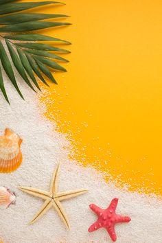 Fruit Photography, Flat Lay Photography, Background For Photography, Photography Backdrops, Creative Photography, Poster Background Design, Beach Background, Flower Background Wallpaper, Tropical Background