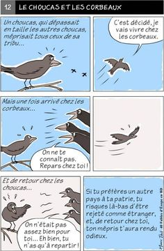 Fables D'esope, Language And Literature, French Language, Crow, Mythology, Classroom, Illustrations, Animals, Storytelling