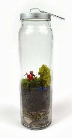 Going For A Ride Moss Terrarium E T Moss Terrarium